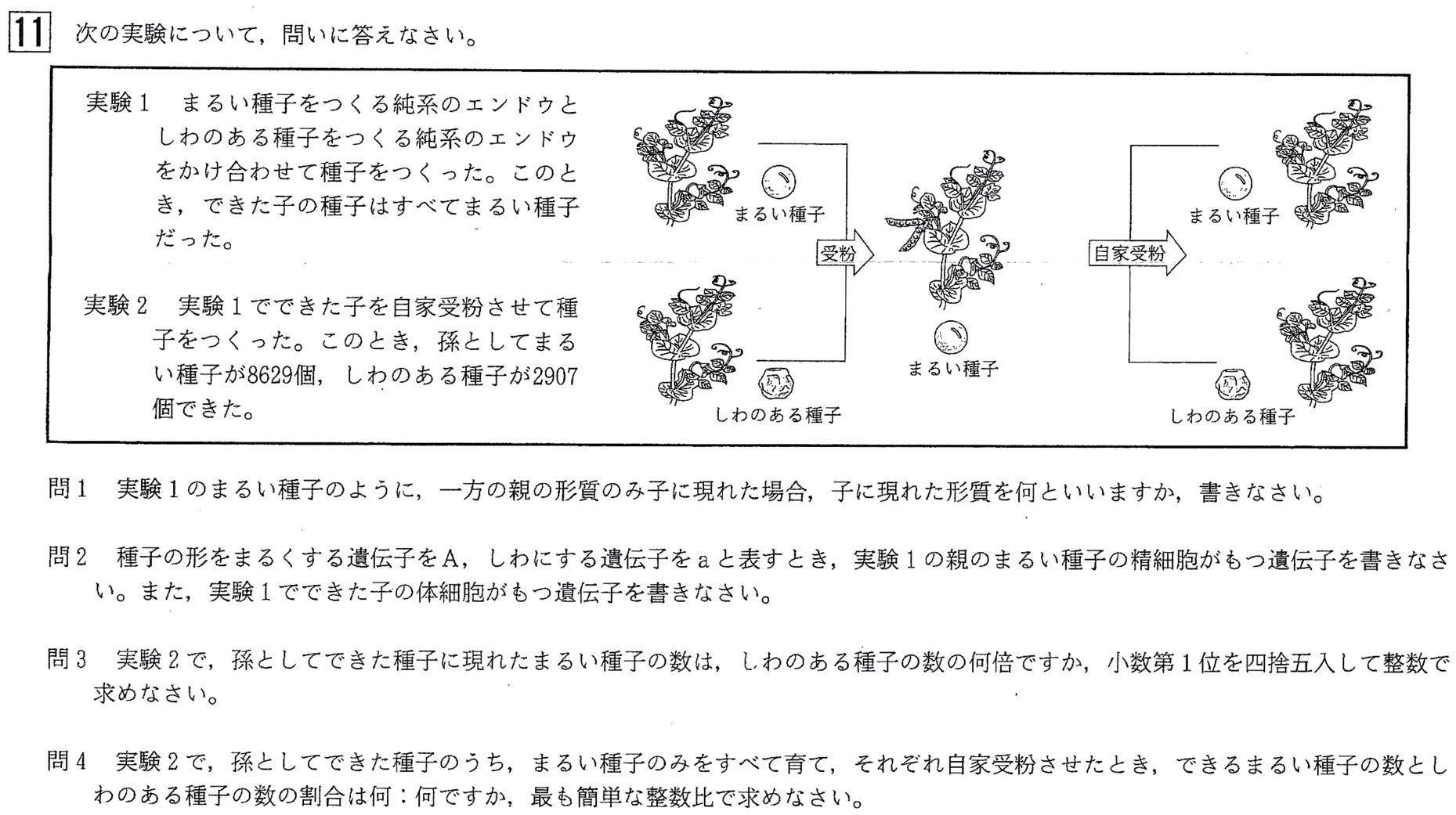中3北海道学力テスト総合B理科2017年過去問題