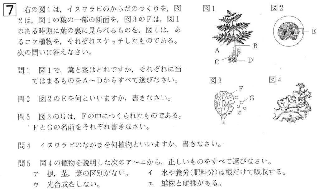北海道学力テスト中1理科2016年第3回過去問題
