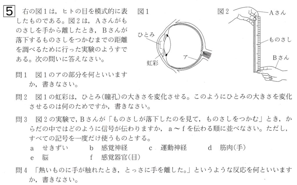 北海道学力テスト中2理科2018年第2回過去問題