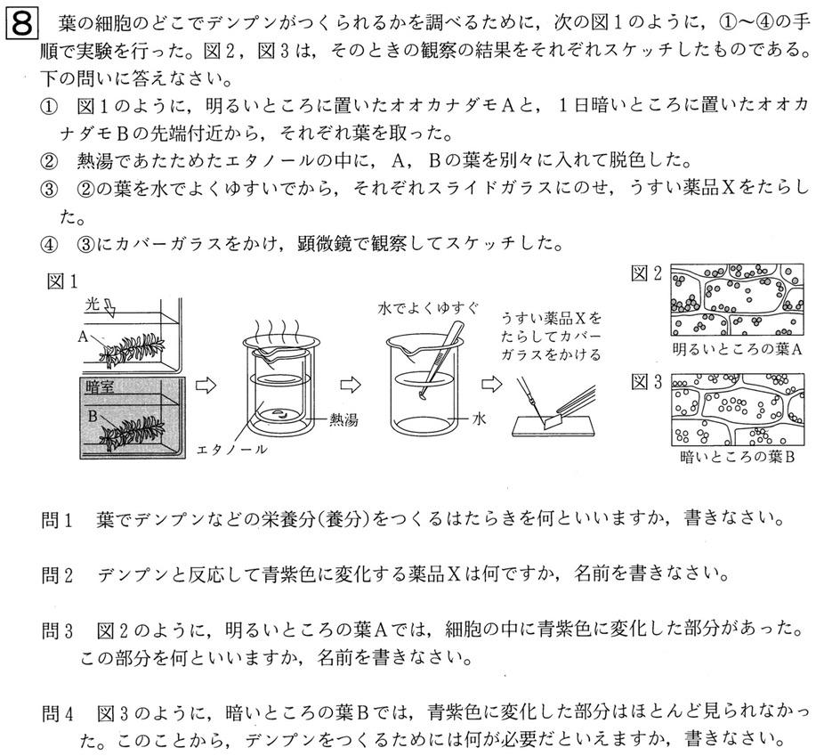 北海道学力テスト中1理科2019年第3回過去問題
